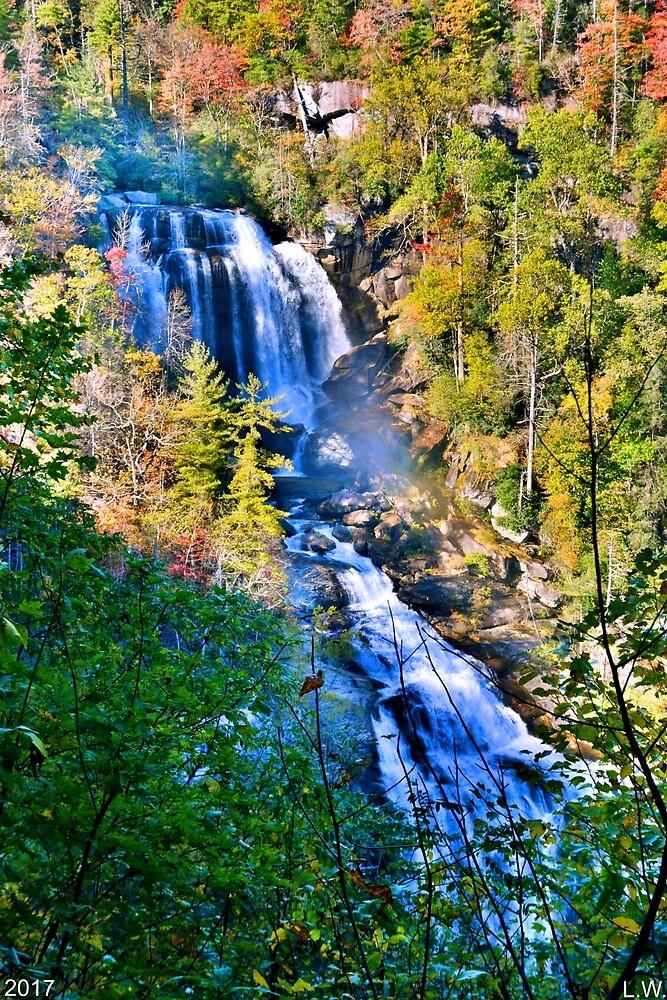 Whitewater Falls North Carolina Vertical by LisaWootenPhoto