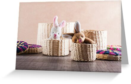 Rabbits in basket by RebecaZum
