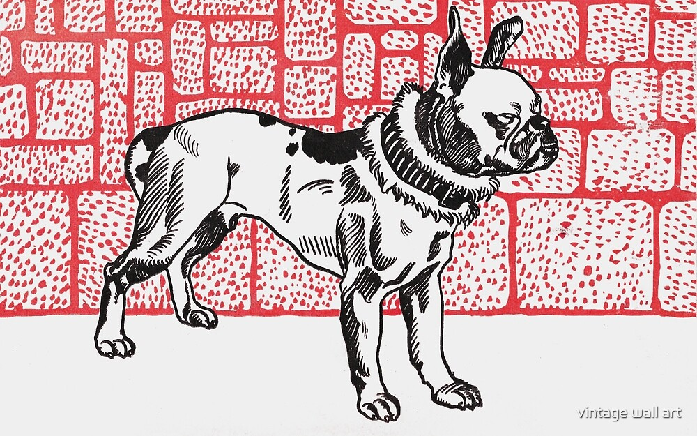 Pitbull Terrier in Red by fineearth