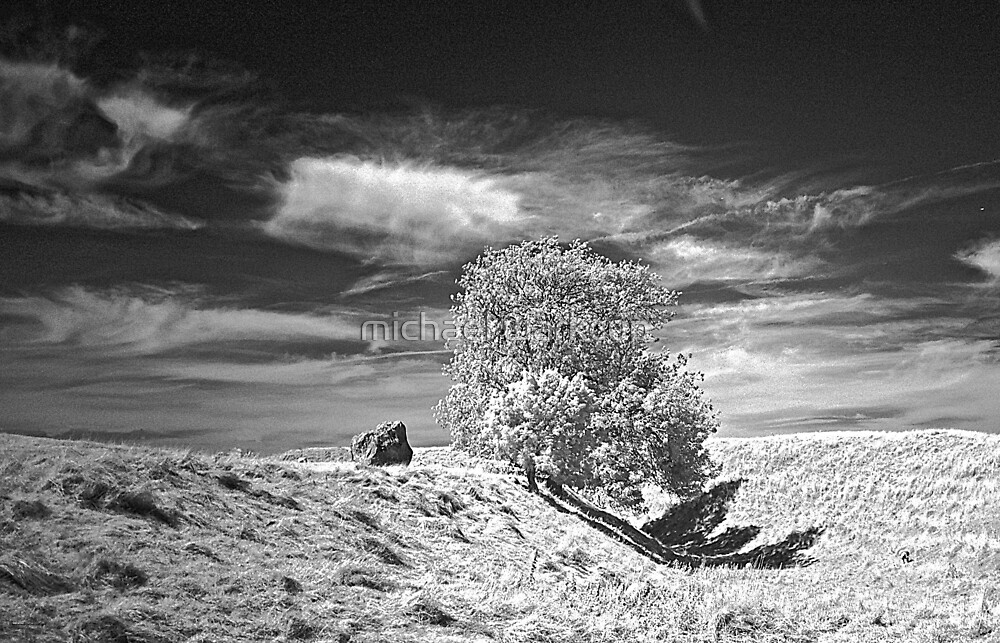 Avebury - neolithic standing circle 1 by michael warkcup