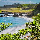 Hamoa Beach View by Angelina Hills