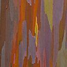 Rainbow Eucalyptus Tree Bark by Angelina Hills