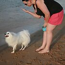 8. Rebecca & her Japanese Spitz by Cathie Brooker