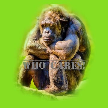 Who cares! Chimpanzee by Julieford