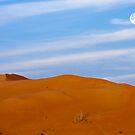 Morning in the Desert by David Clark