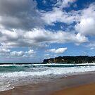 Avoca Beach, NSW Australia  by Of Land and Ocean - Samantha Goode