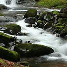 Sweet Creek Falls 3 by CarrieAnn