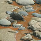 Rusty Water At Heceta Head Beach by CarrieAnn