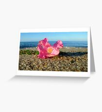 Cape Cod Rose Hip Blossom on the Beach (Peaked Hill Bars, Provincetown) Greeting Card