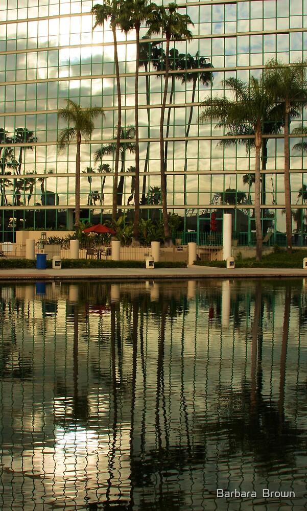 California Reflections by Barbara  Brown
