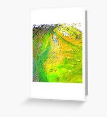 Algae ,Flying Fox Creek  Greeting Card