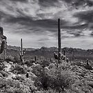 A Morning Hike in the Superstition in Black and White  by Saija  Lehtonen