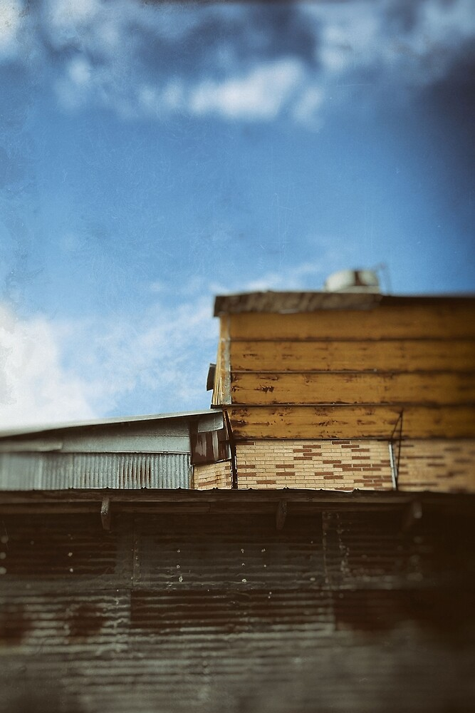 Rooftops by Trish Mistric