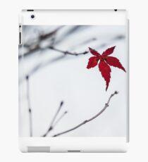 Acer leaf iPad Case/Skin