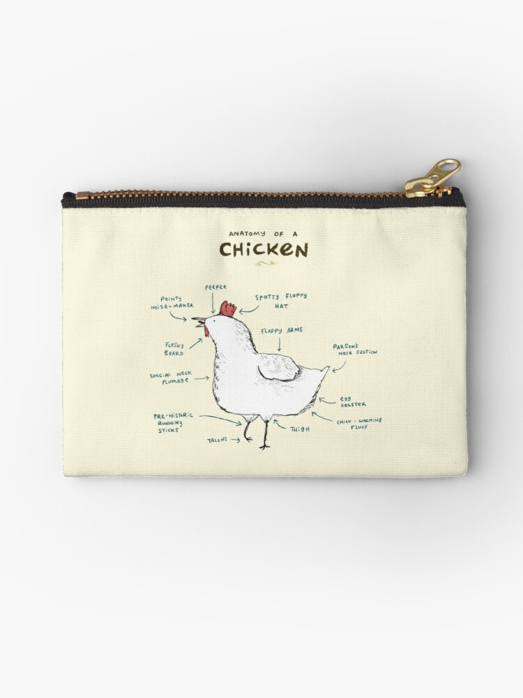 Anatomy Of A Chicken Studio Pouches By Sophie Corrigan Redbubble
