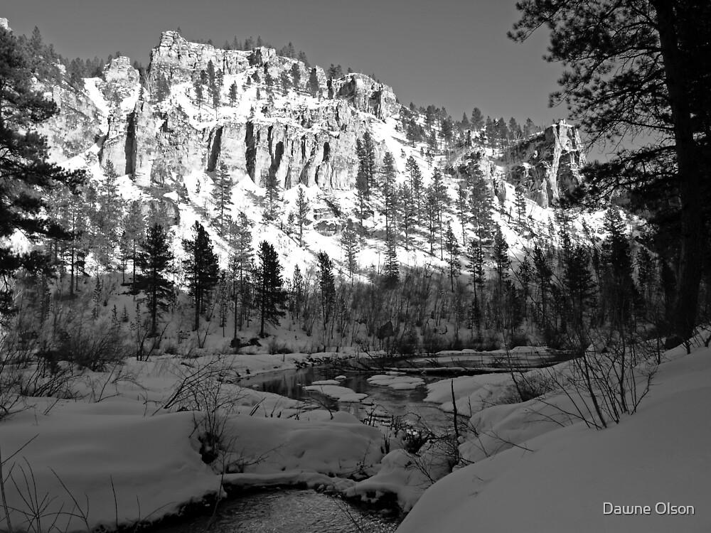 Spearfish Canyon by Dawne Olson