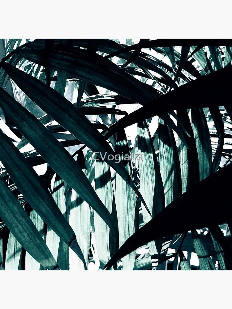 Inside of the Jungle by CVogiatzi