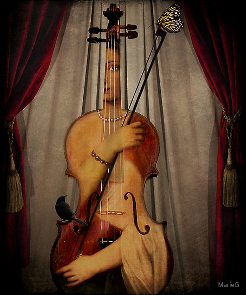 Der Musiker von MarieG