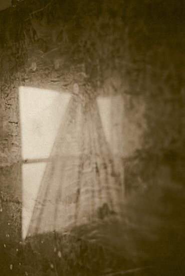 passing windows by butchart