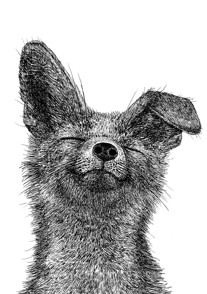 Fox by Jenna Kunnas