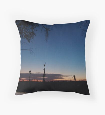 When you wish upon a star... Throw Pillow
