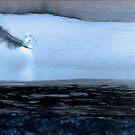 Moonlight Bay by kevin smith  skystudiohawaii