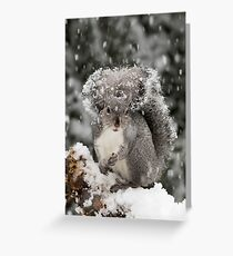 Snowy Day Gray Greeting Card