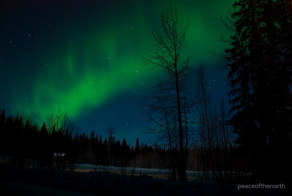 Aurora Delight at Night by peaceofthenorth