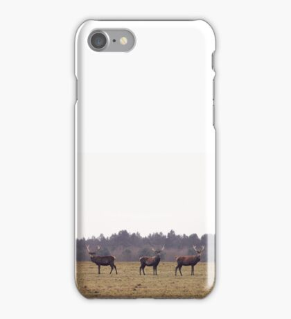 Three Stags iPhone Case/Skin