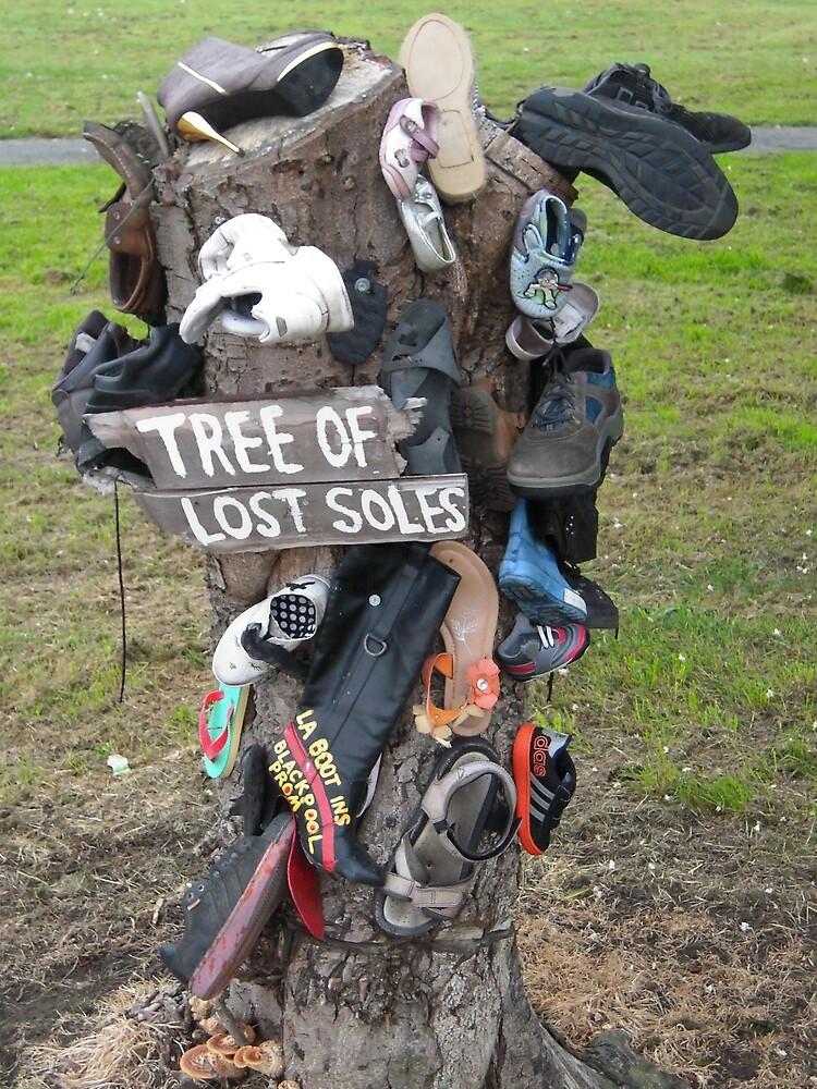 Tree Of Lost Soles by Graham Geldard
