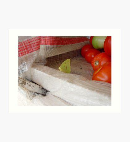 The Tomato Vendor - Common Sulphur Butterfly Art Print