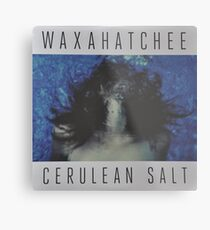 Waxahatchee - cerulan salt vinyl LP sleeve art fan art Metal Print