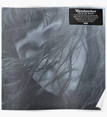 Waxahatchee - out in the storm vinyl LP sleeve art fan art Poster