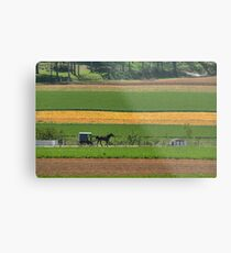 Amish Farmland Metal Print
