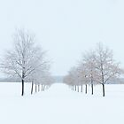 Snow Covered Country Lane by lorilee