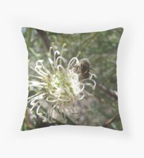 Grevillea Commutata (Proteaceae), with Wasp Throw Pillow
