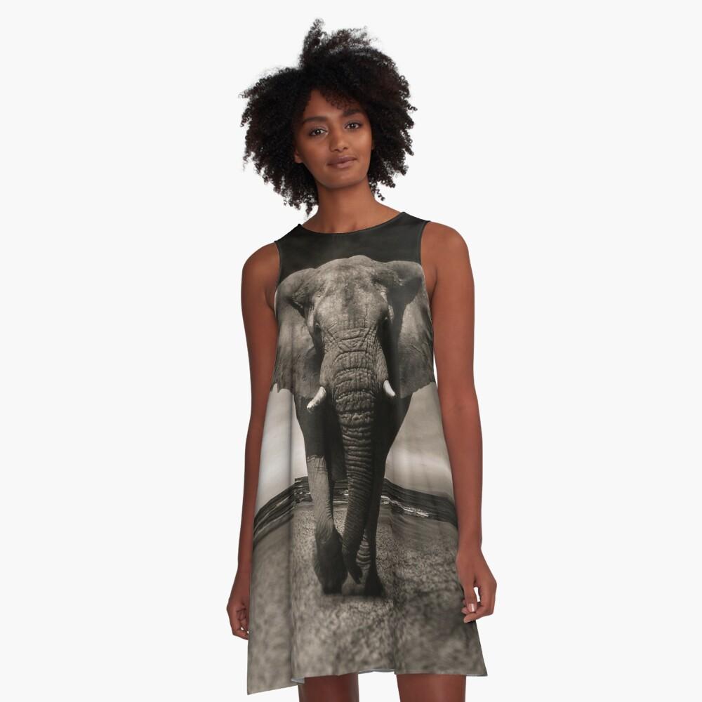 Elephant Black and White Photo-realistic Print  A-Line Dress