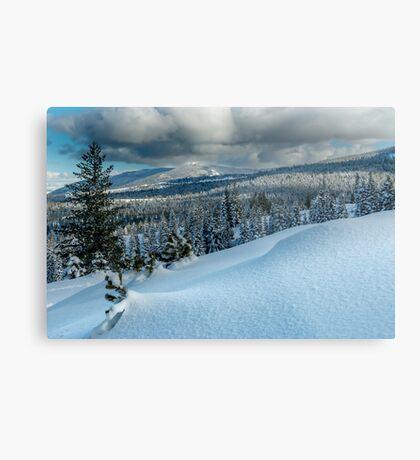 Snow Scape Metal Print