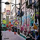 alley cats by Bruce  Dickson