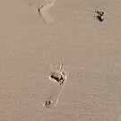 Friday footprints by Jan Stead JEMproductions