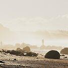 Moeraki Boulders by Trish Threlfall