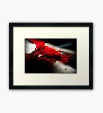 Fleeting flamenco Framed Print