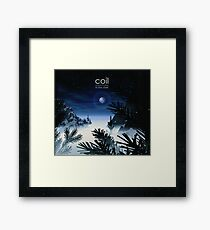 Coil - Musick To Play In The Dark Framed Print