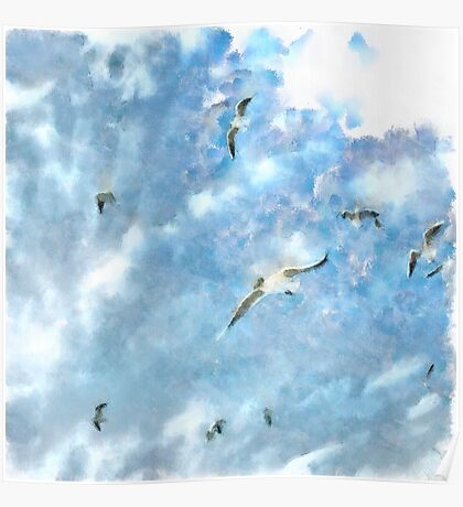 The Chasers - Seagulls In Flight Poster
