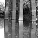 Bridge Reflections by KSkinner