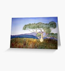 Early Morning  on Mt. Speculation Greeting Card