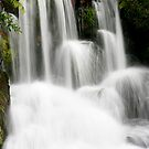 Waterfall North Island New Zealand by Dave Cauchi