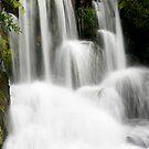 Waterfall North Island New Zealand by Dave Cauchi