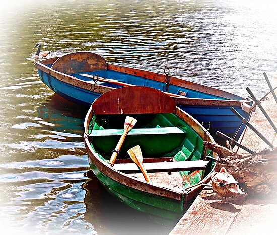 Boats For Hire by ScenicViewPics
