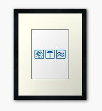 Summer icons Framed Print